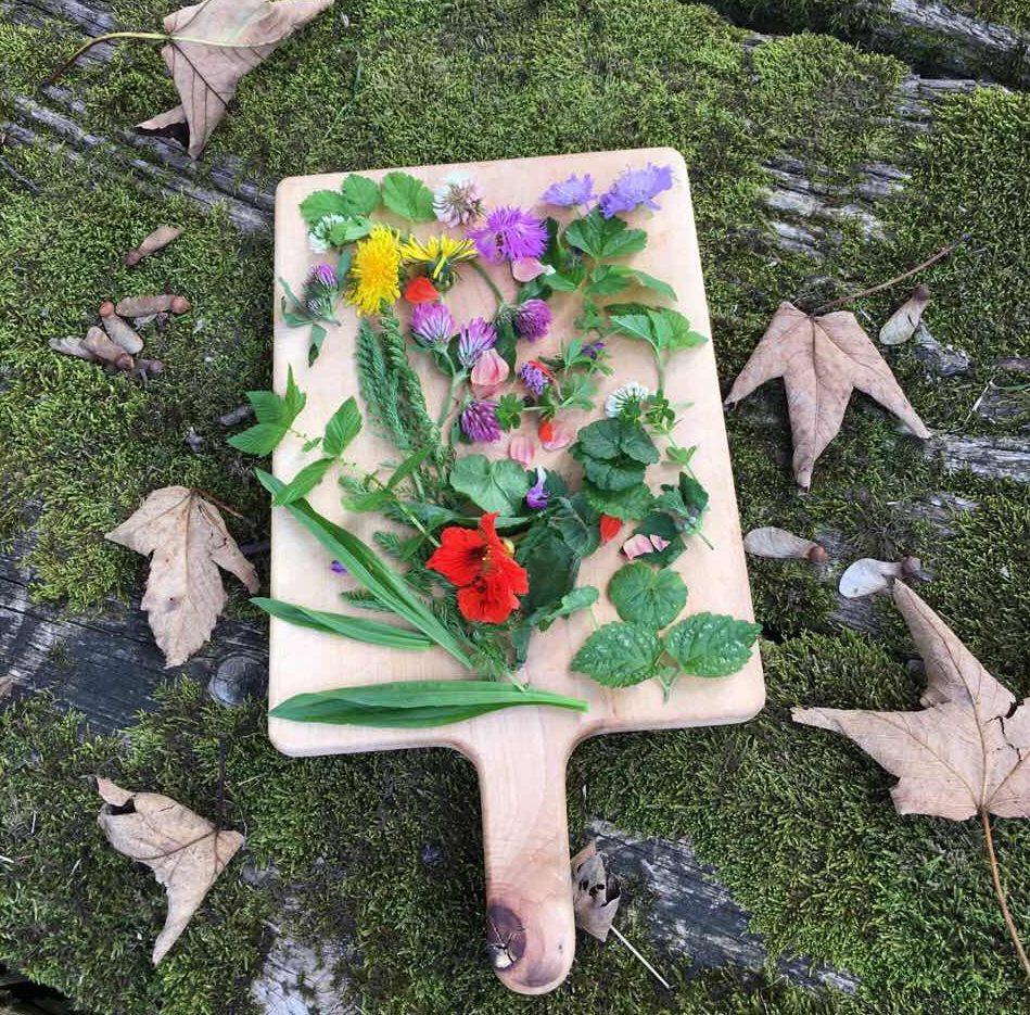 Travniške rastline za SOLATO
