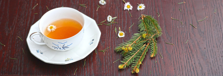 Čaj z marjetico
